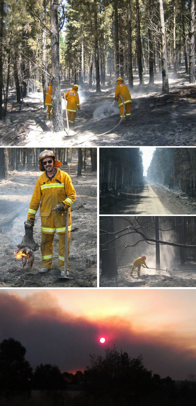 Hernes Oak and Morwell fire 2014