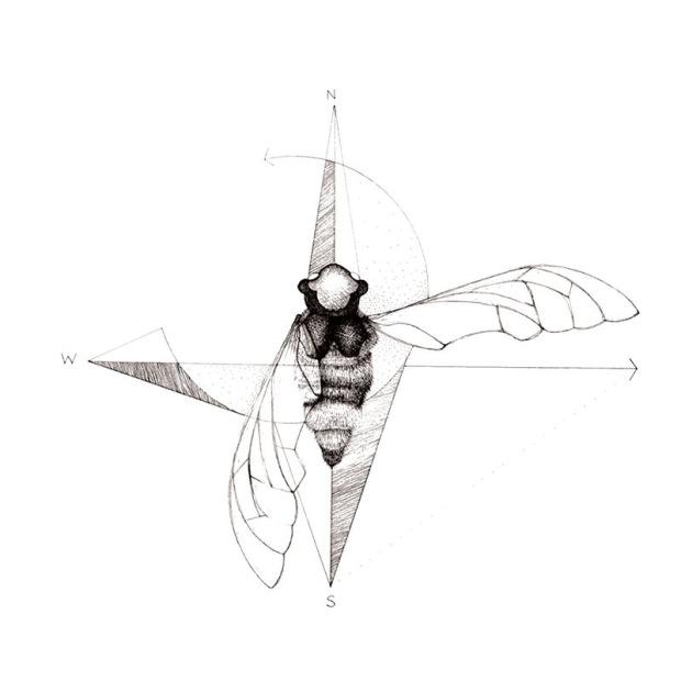 Amy Middleton Bug 1