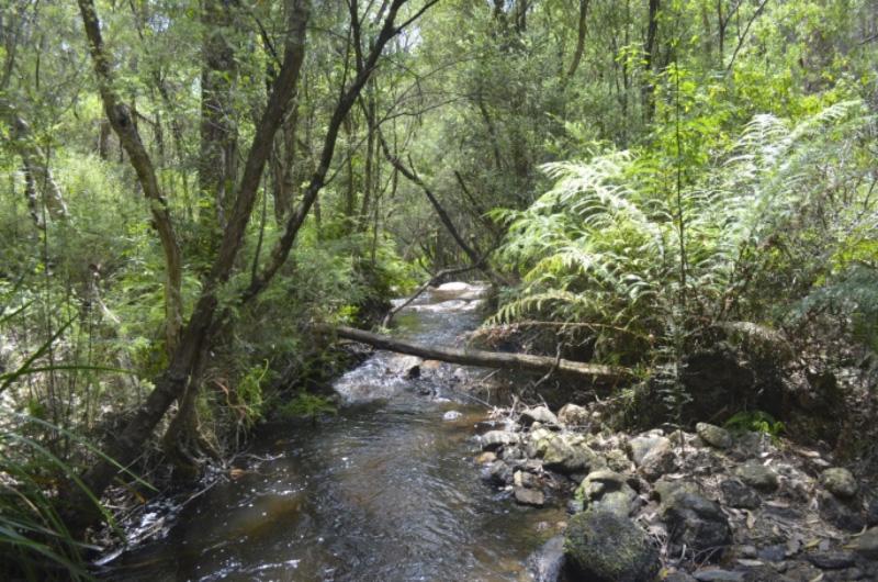 Kirth Kiln National Park