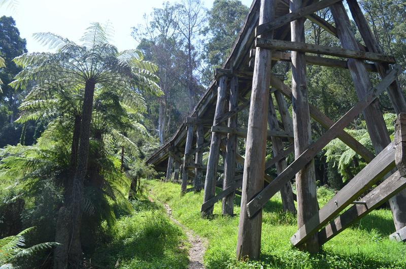 The Trestle Bridge