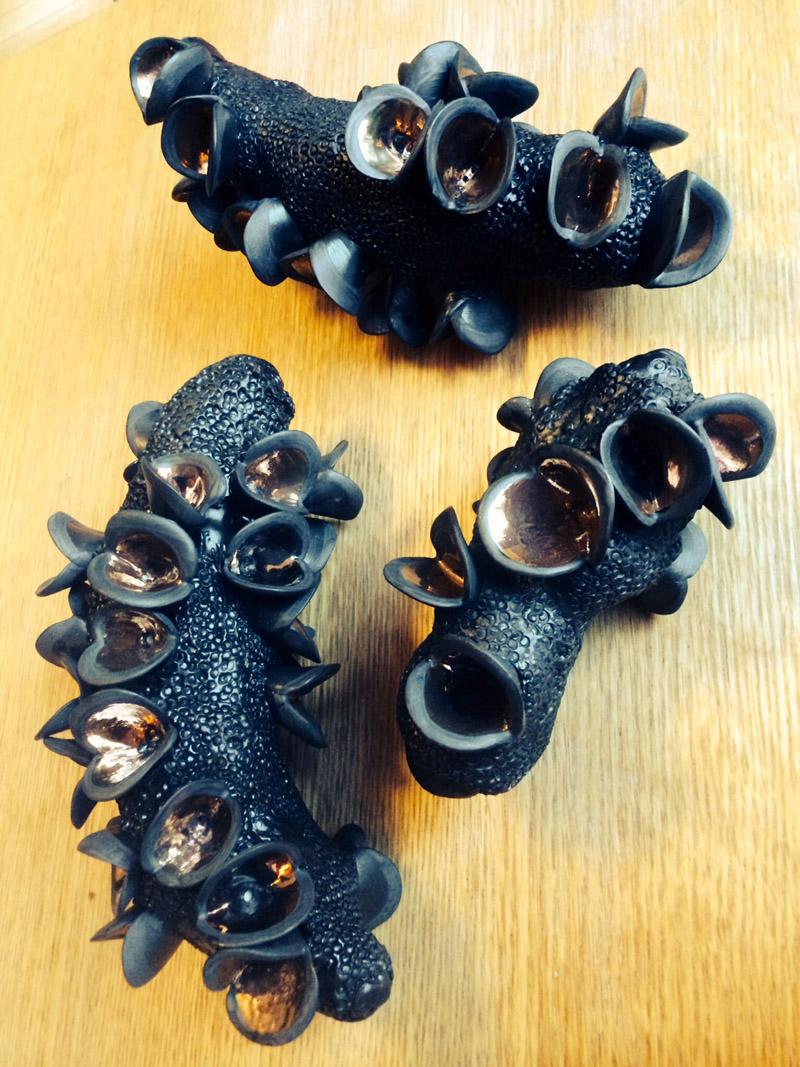 Eva Glac, 3 banksia pods after the fire (serotiny series), southern ice porcelain, black glaze, copper,