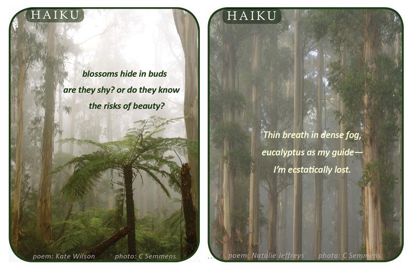 Haiku collage 2