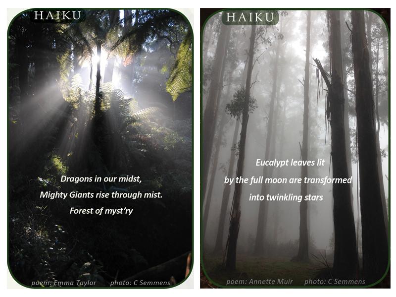Haiku collage 3