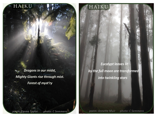 Haiku collage 3
